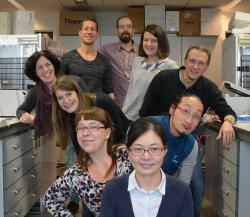 Team van Professor Holger Gerhardt