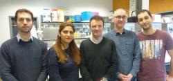 Team van professor Johan Swinnen
