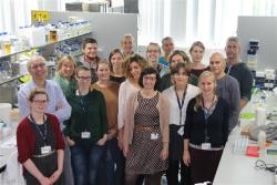 Team van professor Rudi Beyaert