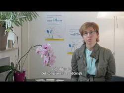 Embedded thumbnail for Voedingssupplementen en kankerbehandelingen: wat zijn de voor-en nadelen?