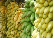 banaan-melanoom