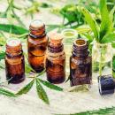 Medische cannabis en kanker
