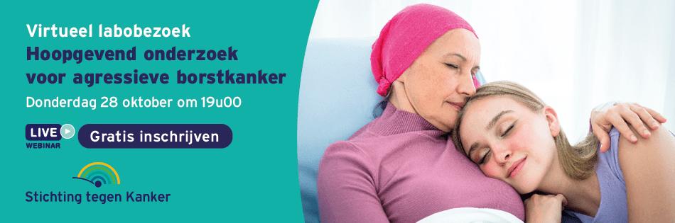 banner nl
