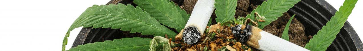Quels risques si je fume du canabis?