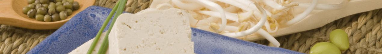 Soja in de voeding mag bij borstkanker