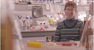 Onderzoeker - kanker
